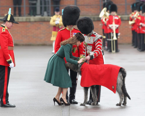 Duchess+Cambridge+Visits+Irish+Guards+Their+64iXuzUZt4tx